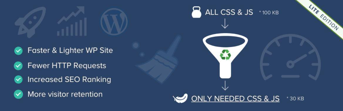 Reduce page load time WordPress plugin