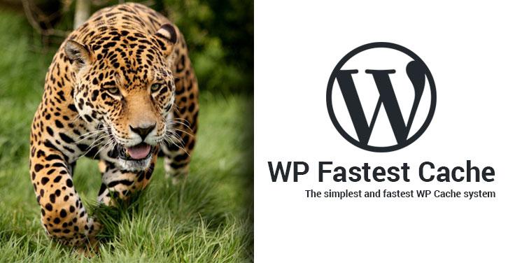 wp fastest premium