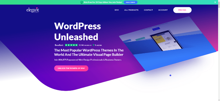 Divi best wordpress themes