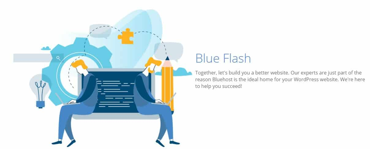 Bluehost basic vs plus