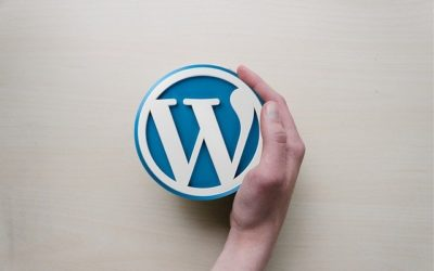 What is an XFN Link Relationship in WordPress
